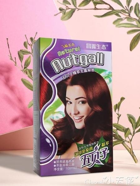 染髮劑五貝子植物染髮劑天然純黑無刺激自己在家染髮膏女2020流行色網紅 小天使