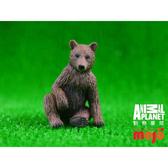 【Mojo Fun 動物星球頻道 獨家授權】 灰棕幼熊 387217