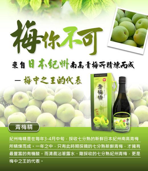 草本之家青梅精500ML/瓶(超大瓶)