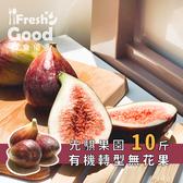 【光騏果園】光騏有機轉型無花果 10斤