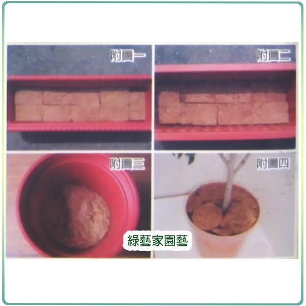 【綠藝家001-A70】花公主純天然椰纖片10片/包
