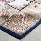 【范登伯格進口地毯】芭比人造絲質地毯/地墊/門墊/玄關墊-圖藤藍160x20cm