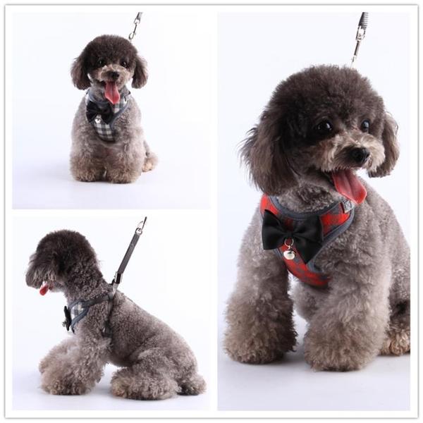 狗狗牽引繩貓咪胸背泰迪背心式可愛牽引帶小型犬背帶比熊寵物狗繩 露露日記