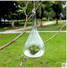 懸掛玻璃球空心植物吊瓶