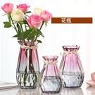 玻璃花瓶 北歐創意玻璃花瓶透明水培綠蘿植...
