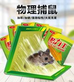 老鼠貼超強力粘鼠板抓捉老鼠膠藥捕鼠籠驅鼠器滅鼠神器夾家用 東京衣櫃