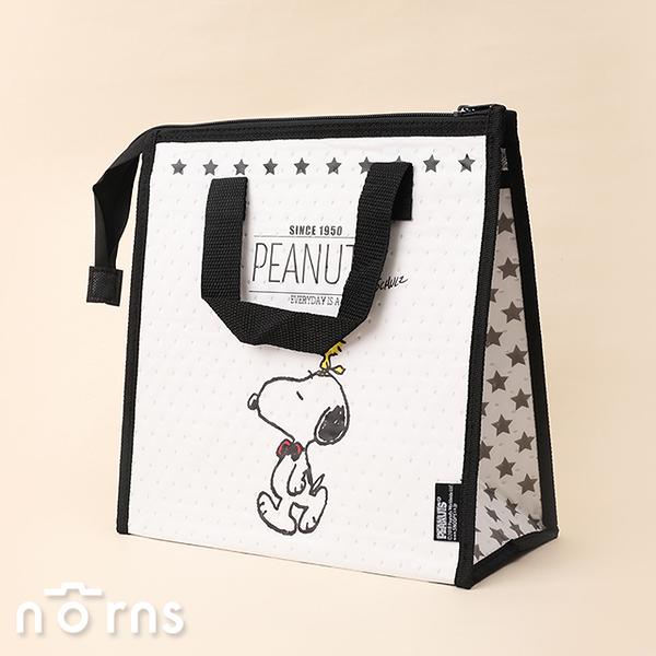 日貨Skater保冷手提袋FBC1 Snoopy系列- Norns 日本進口 史努比 保冷袋 便當袋 保溫袋
