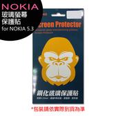 Nokia 5.3 玻璃螢幕保護貼