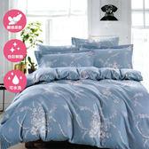 單人二件式床包+枕套組 舒適磨毛布#39