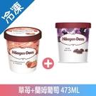 哈根達斯草莓+藍姆葡萄冰淇淋473ML【愛買冷凍】