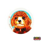 【收藏天地】台灣紀念品*神奇的陶瓷吸水杯墊-貴賓犬∕馬克杯 送禮 文創 風景 觀光  禮品