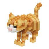 《 Nano Block 迷你積木 》NBC-282 茶虎貓 ╭★ JOYBUS玩具百貨