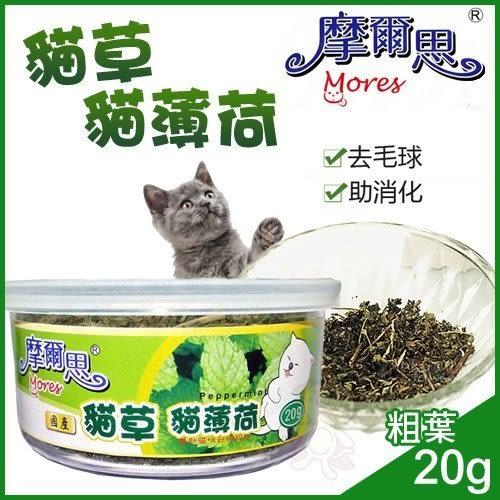 *KING WANG*摩爾思-貓草20g(粗葉) /貓薄荷/貓零食/貓玩具/貓大麻/好消化/去毛球