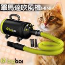 【澳洲品牌】bigboi MINI 寵物...