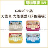 寵物家族-CARNO卡諾 方型加大兔便盆RJ125 (顏色隨機)
