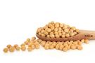 加拿大進口 非基因改造 黃豆 600 g