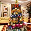 W百貨耶誕樹 耶誕 1.5米300頭聖誕樹精裝豪華裝飾 聖誕樹套餐 加密聖誕樹聖誕節裝MY~417