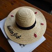 草帽-手工編織大簷帽可愛小瓢蟲渡假時尚女遮陽帽73si43[巴黎精品]
