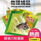 新年鉅惠老鼠貼超強力粘鼠板抓捉老鼠膠藥捕鼠籠驅鼠器滅鼠神器夾家用 東京衣櫃