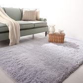 樂巢加厚 可水洗 不掉色 絲毛地毯地墊客廳茶幾臥室床邊地毯 T