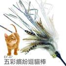 PetLand寵物樂園 五彩繽紛歡樂逗貓...