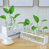 水培小花瓶創意玻璃綠蘿透明小清新水養植物桌面裝飾擺件客廳插花 ATF 中秋鉅惠