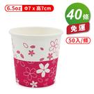 紙杯 (櫻花) (6.5oz) (50入...