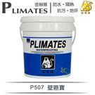 【漆寶】金絲猴│壁癌寶P-507(5加侖...