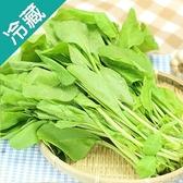 【產銷履歷】菠菜1包(250g±5%/包)【愛買冷藏】