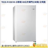含安裝 東元 TECO R1091W 小鮮綠 99公升單門小冰箱 白 公司貨 節能冰箱 99L 適 套房 學生 宿舍