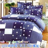 鋪棉床包 100%精梳棉 全舖棉床包兩用被四件組 雙人5*6.2尺 Best寢飾 6982-2