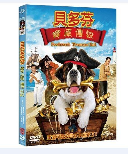 貝多芬寶藏傳奇DVD Beethovens Treasure Tail