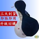 月琴 [網音樂城] 台製 台灣 網音 長柄 兩弦 ( 十周年狂歡慶 )