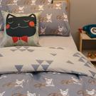 Iron cat 鋼鐵小貓 Q2雙人加大床包雙人薄被套4件組 四季磨毛布 北歐風 台灣製造 棉床本舖
