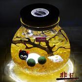 幸福海藻球MARIMO微景觀生態瓶  迷你水培植物 辦公桌擺件盆栽【全館限時88折】TW