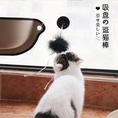 貓咪玩具逗貓棒羽毛吸盤貓貓玩具帶鈴铛小貓幼貓逗貓玩具寵物用品( 中秋烤肉鉅惠)