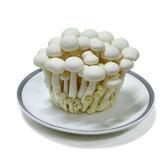 【陽光農業】美白菇 (約100g/包)