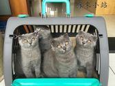 籃貓包外出貓旅行箱可折疊可