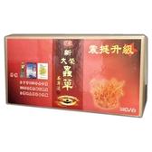 新大榮蟲草養身液 30ML*10瓶/盒◆德瑞健康家◆