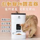 玲瓏貓餵食器 藍芽版 4L 自動餵食器 大容量 智能餵食器 餵食器 寵物餵食器 智能餵食