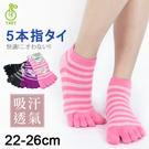【衣襪酷】條紋五趾襪 吸汗透氣 台灣製 芽比