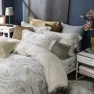 鴻宇 雙人床包薄被套組 天絲300織 悠舒拉 台灣製 T20108
