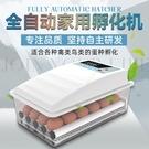 水床孵化器小型家用雞鴨鵝苗孵化機全自動智慧恒溫保溫孵蛋箱 艾莎