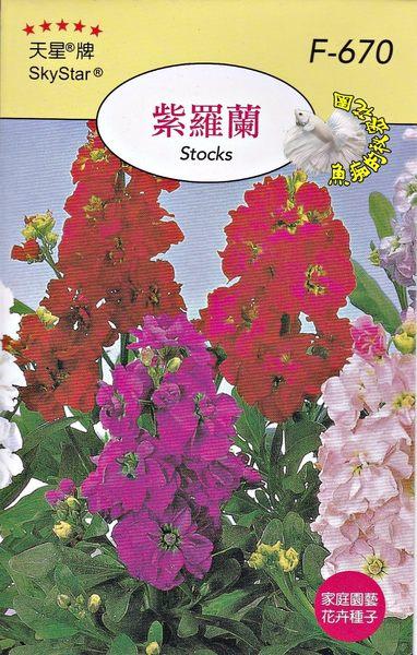 [紫羅蘭種子] 各式觀賞花卉種子 香草種子 蔬菜水果種子 . 單買種子。郵局運費40元起