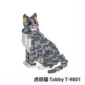 【Tico 微型積木】T-9801 虎斑貓 Tabby