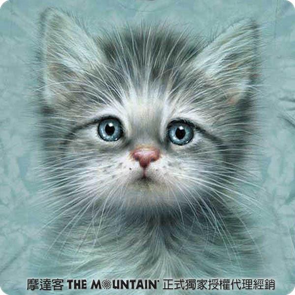 【摩達客】 (預購) 美國進口【The Mountain】自然純棉系列 藍眼小貓 T恤(10413045020a)