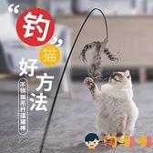 鋼絲羽毛逗貓棒長桿可替換頭貓玩具貓咪磨牙耐咬幼貓用品【淘嘟嘟】
