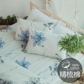 #B183#活性印染精梳純棉5x6.2尺雙人床包+枕套三件組-台灣製(不含被套)