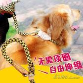 中大型犬P繩牽引帶狗項圈