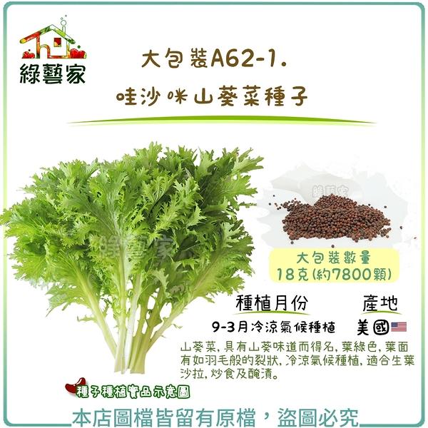 【綠藝家】大包裝A62-1哇沙咪山葵菜種子 18克(約7800顆)
